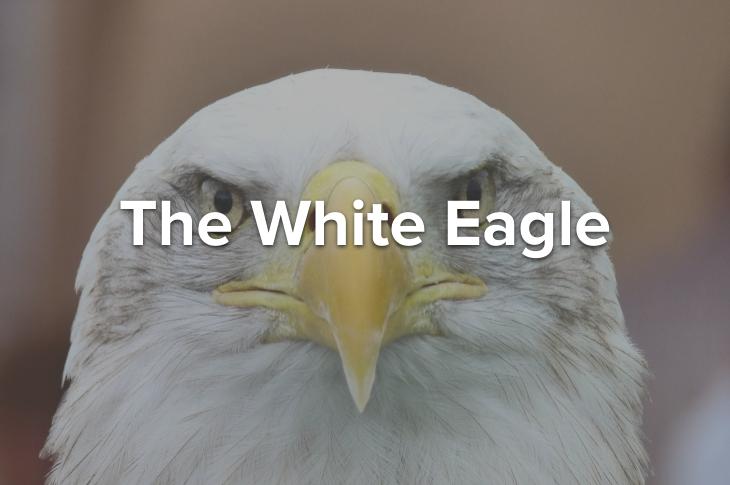 The White Eagle